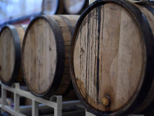 Madrid Wine tour