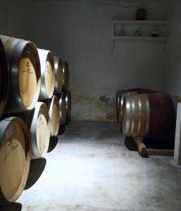 Wine tour in Madrid